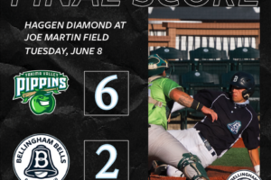 Bells fall to Pippins in Game Two